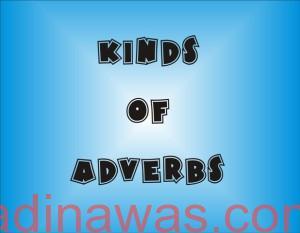 Macam-Macam Adverb Dalam Bahasa Inggris