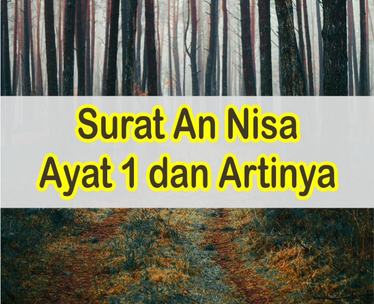 Surat An Nisa Ayat 1 Latin Dan Arab Serta Artinya Perkata Dan Kandungan Ayatnya