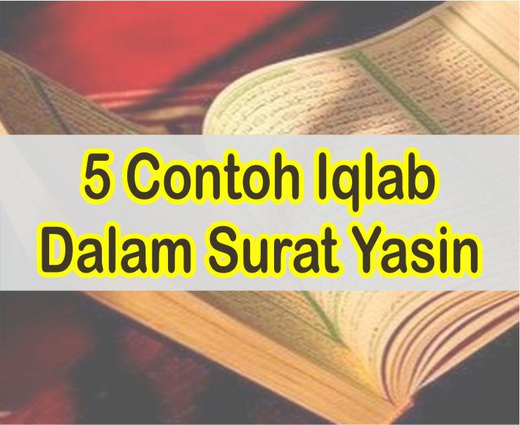 5 Contoh Iqlab Dalam Surat Yasin Beserta Ayatnya
