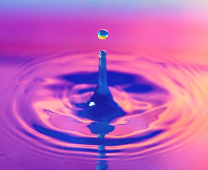 Ayat Alquran Tentang Makhluk Hidup Yang Diciptakan Dari Air