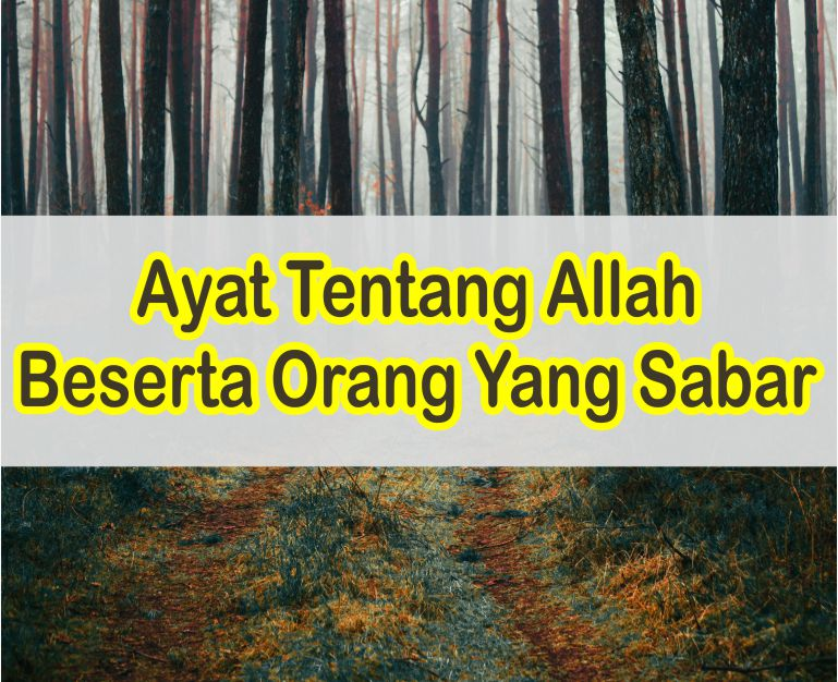 Ayat Tentang Allah Beserta Orang Yang Sabar Dalam Al-Quran Dan Artinya Lengkap