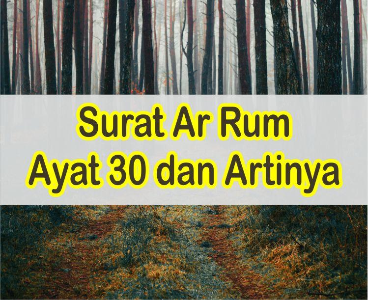 Ayat Tentang Islam Agama Yang Sesuai Dengan Fitrah Manusia Dan Artinya Perkata