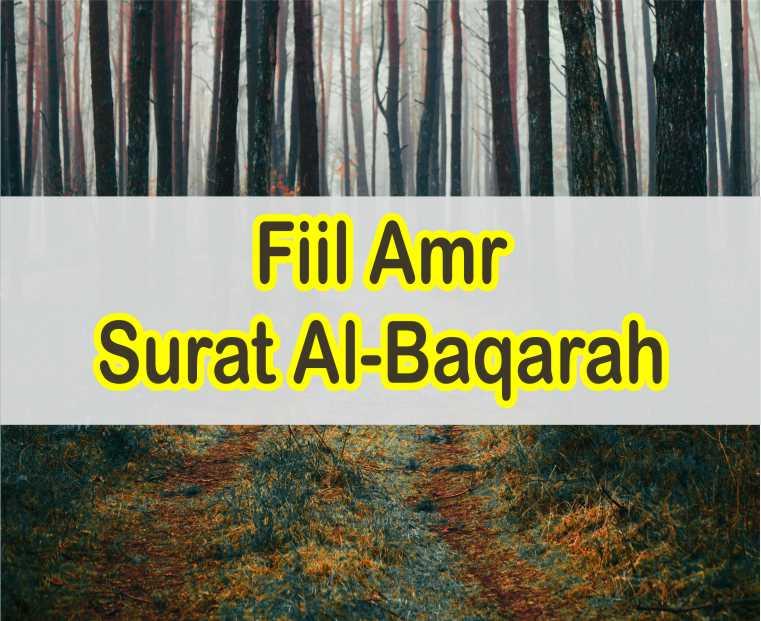 20 Contoh Fiil Amr Dalam Surat Al-Baqarah Berikut Ayat dan Artinya